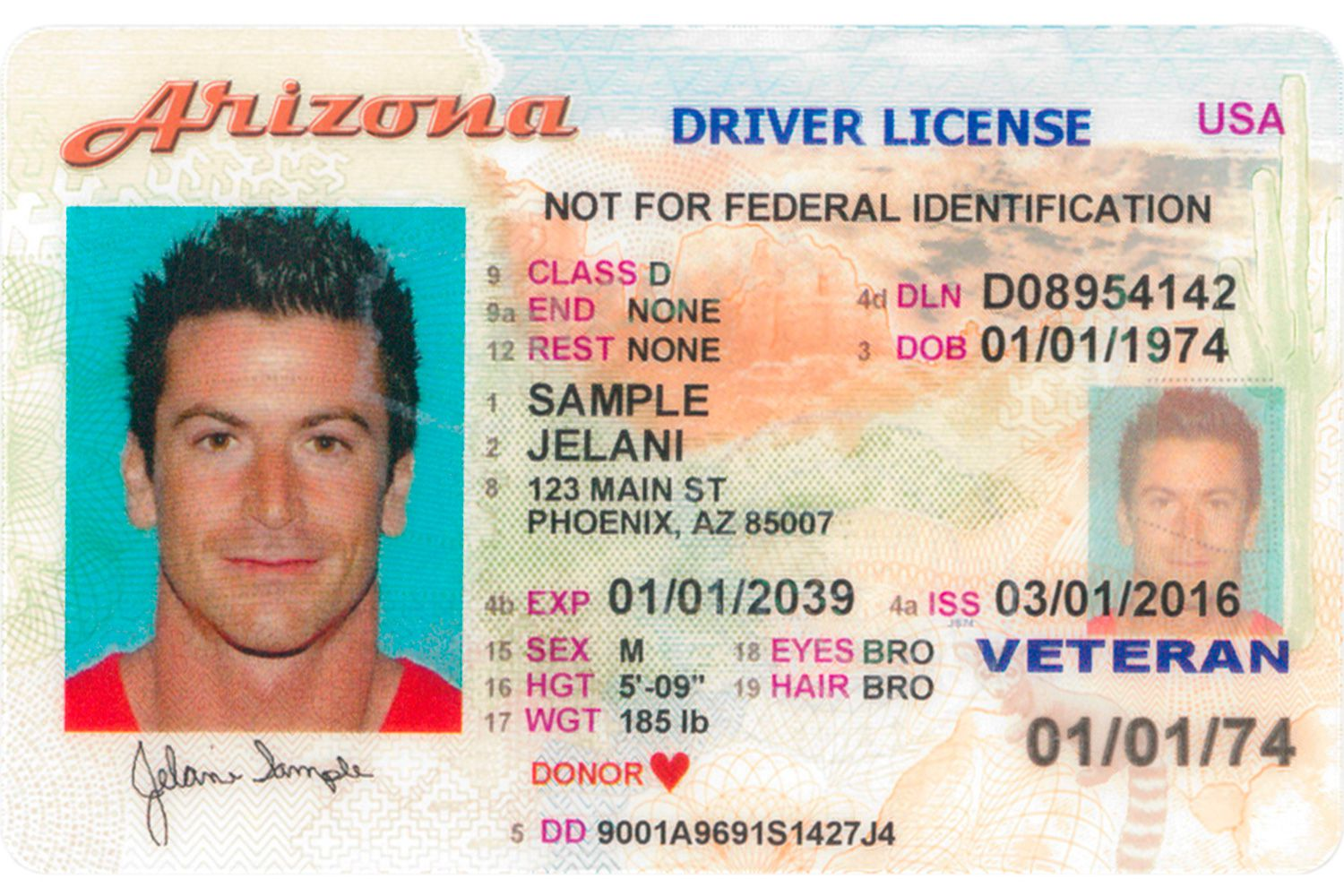 An Does Look Like What Driver's Arizona License