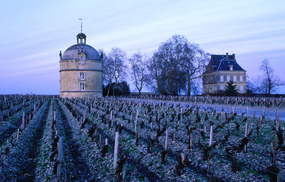 A chateau and vineyard in Bordeaux, France
