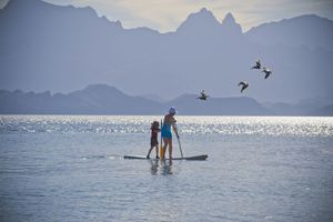 Mom & son on paddle board with pelicans
