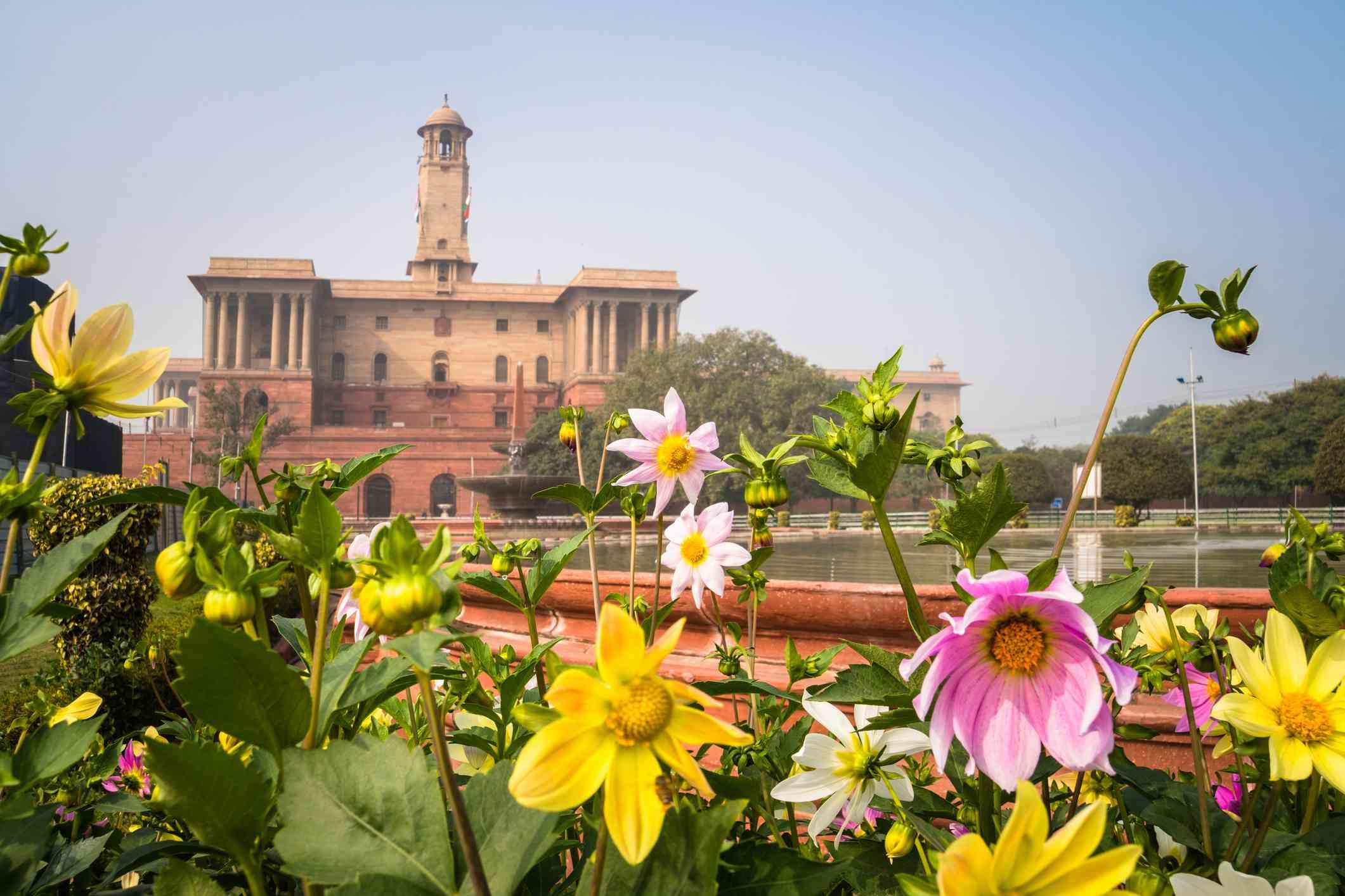 Flowers in a formal garden, Mughal garden, Rashtrapati Bhavan