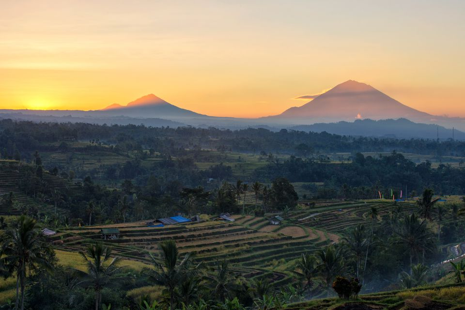 Morning view at Jatiluwih Rice Terrace, Tabanan Bali