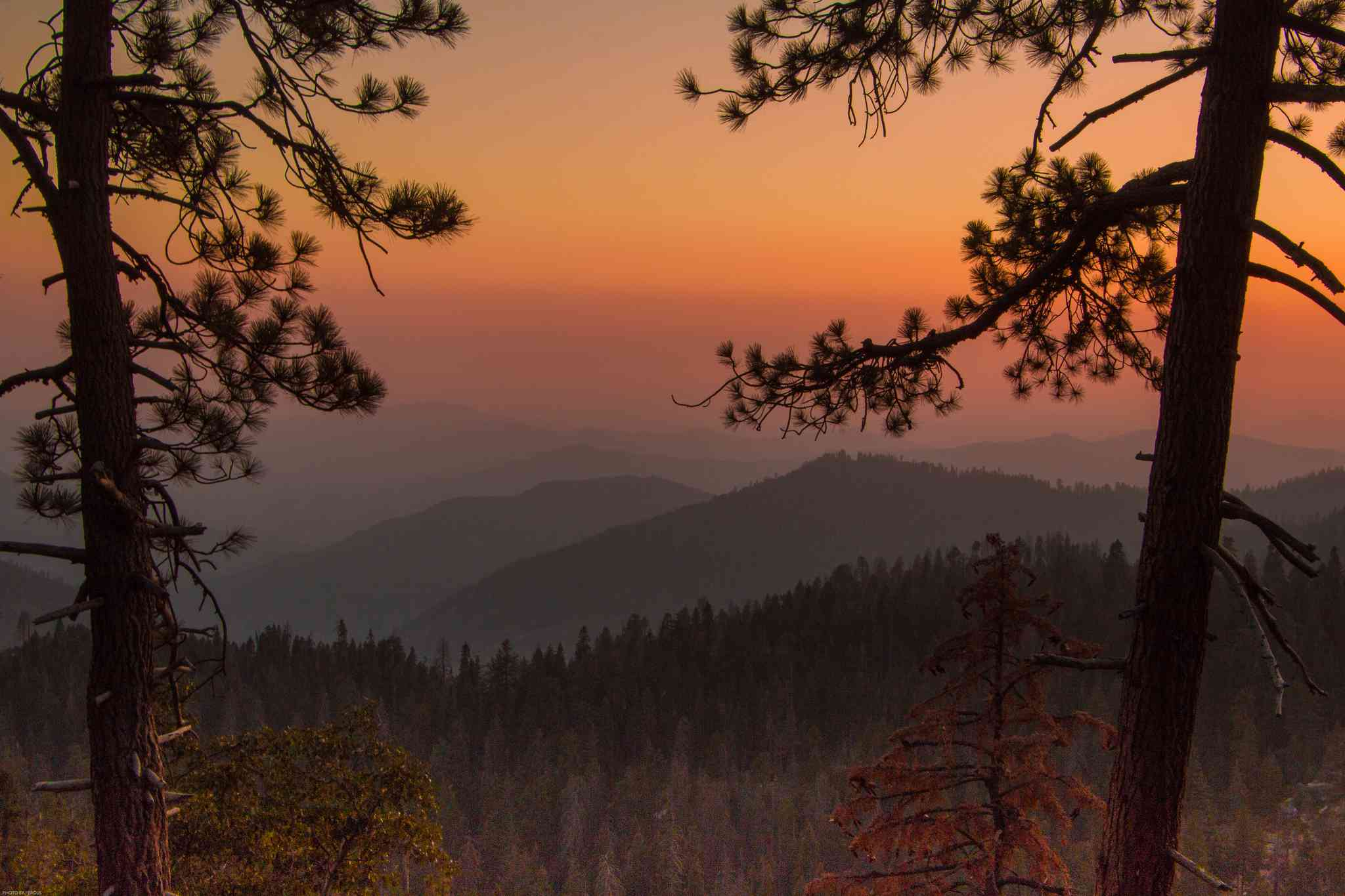 Driving Distance From Los Angeles to National Parks