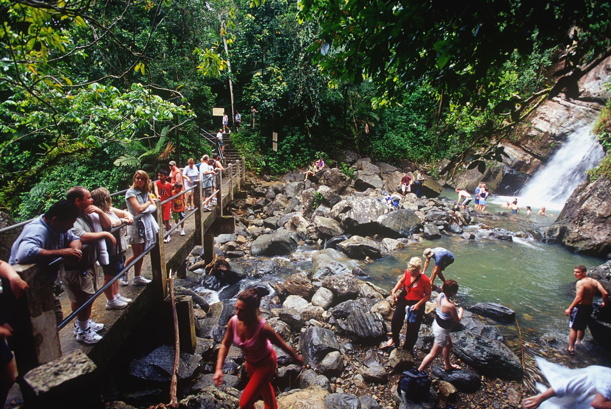 Zip-Line Canyoning in El Yunque National Forest, Puerto Rico