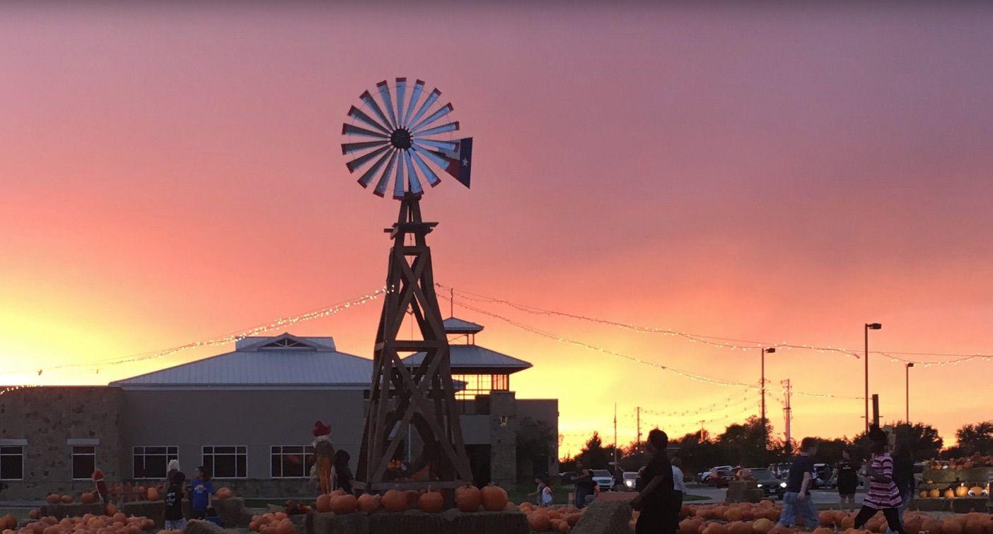 Pumpkins on the Prairie during autumn