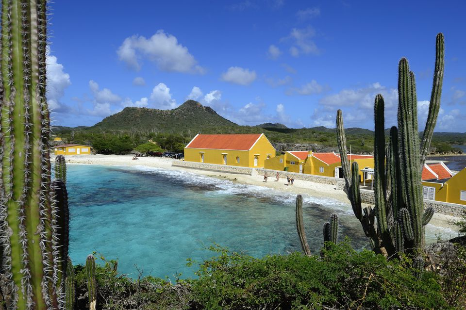 Cacti, brightly colored buildings, and a picturesque beach on Bonaire, Dutch West Indies