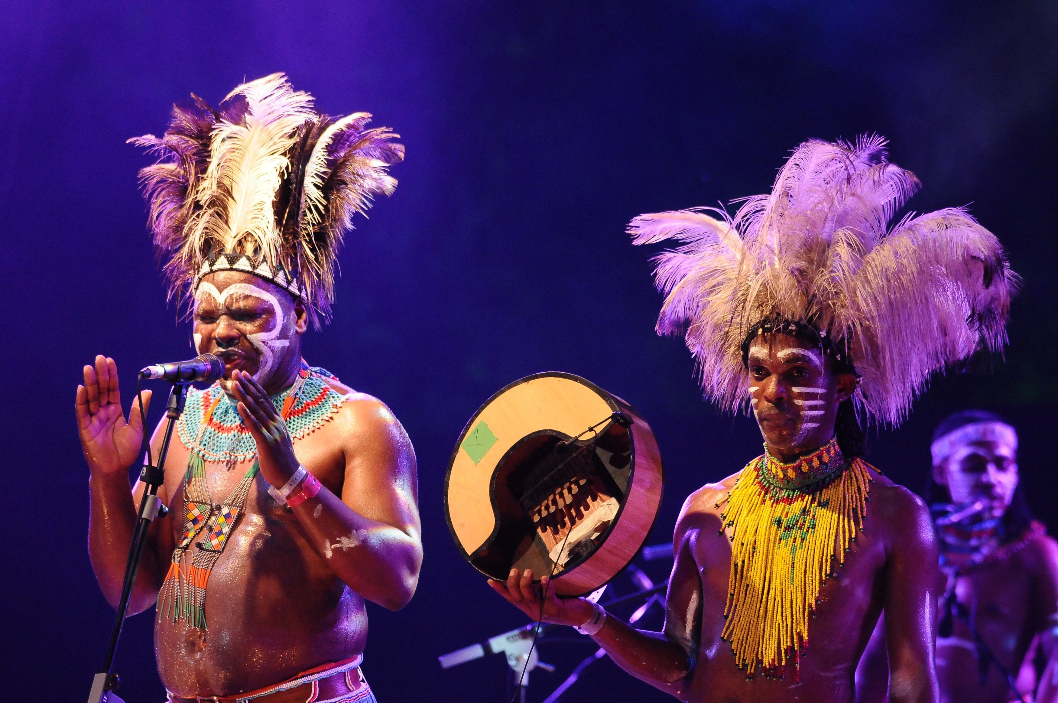 Performers at the Rainforest World Music Festival