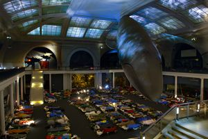 Sleep in the shadow of the AMNH's great blue whale