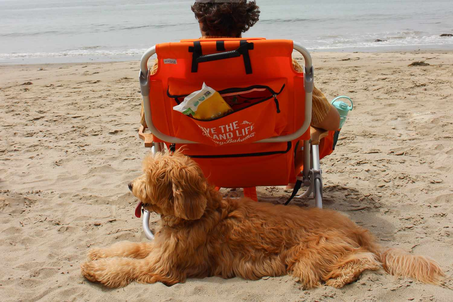 Cool Tommy Bahama Deluxe Backpack Beach Chair Review Alphanode Cool Chair Designs And Ideas Alphanodeonline