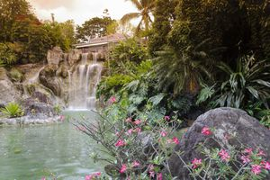Restaurant above the waterfall, botanical garden of Deshaies, Basse Terre, Guadeloupe, France