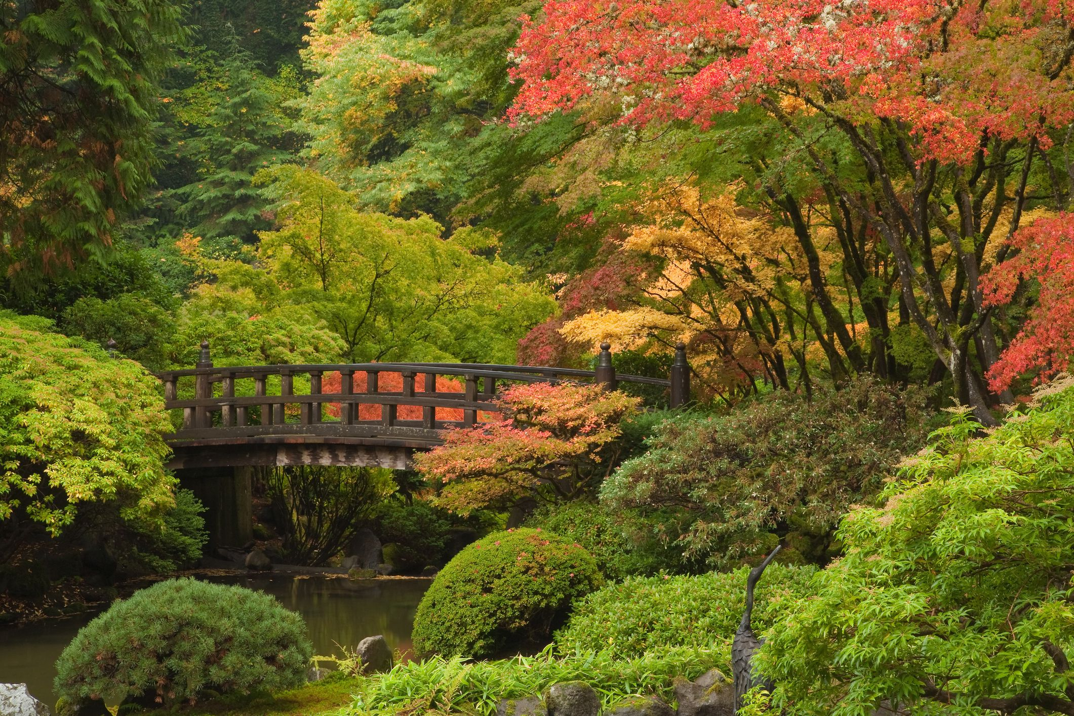 Puente en Portland Japanese Jardín en otoño