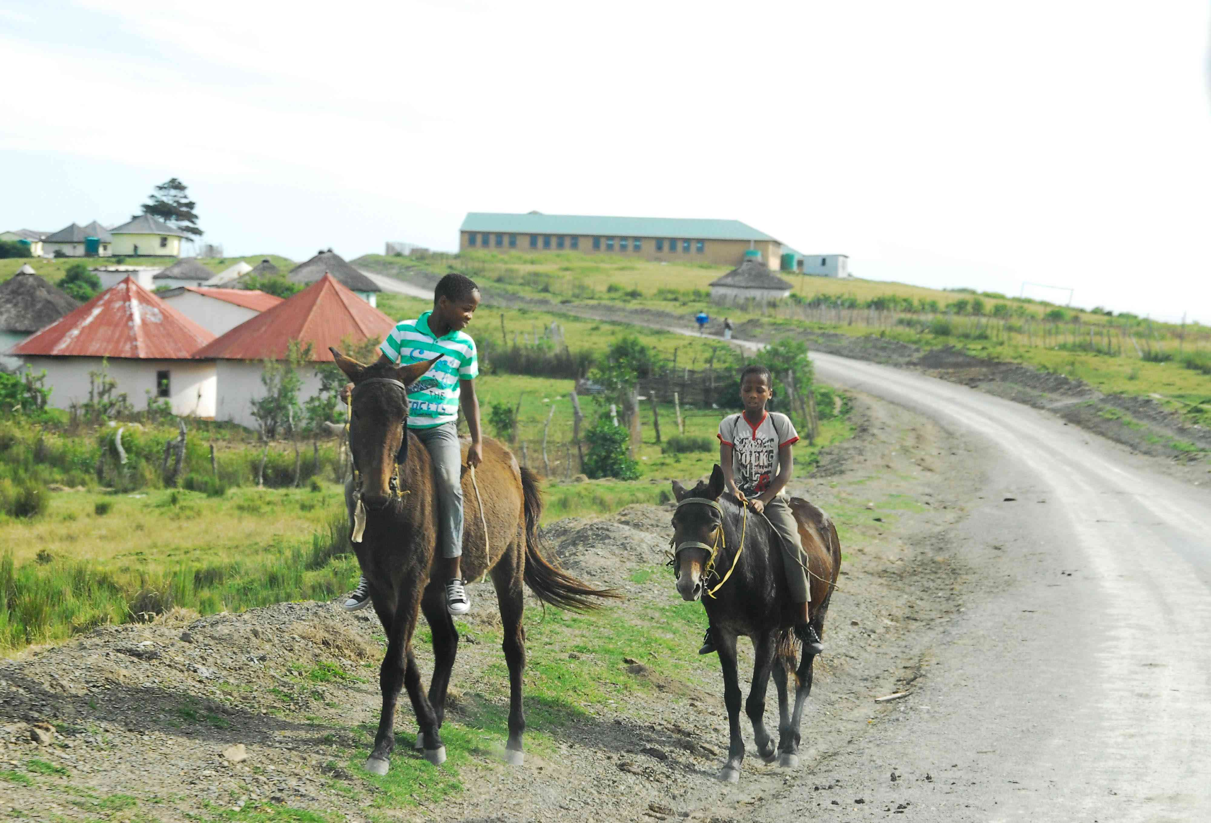 Xhosa boys riding horses along a dirt road in the Transkei, South Africa