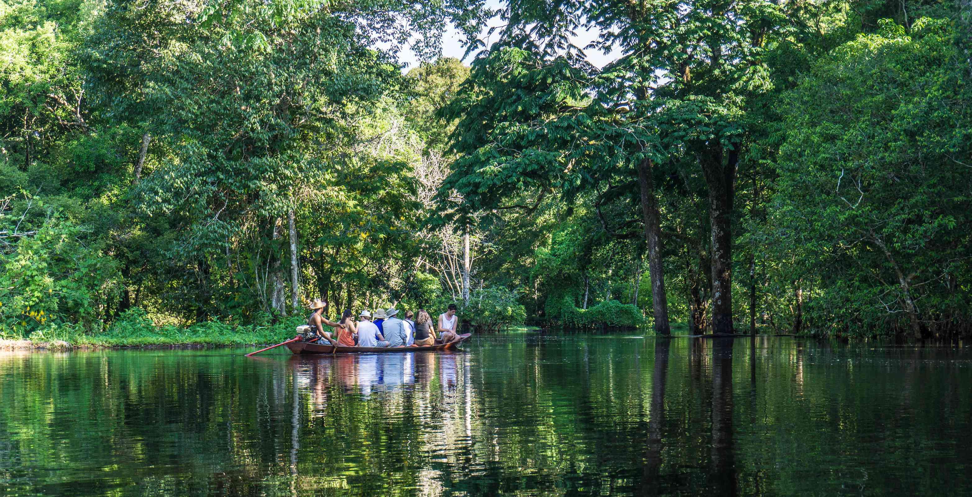 Beautiful amazon river and rainforest