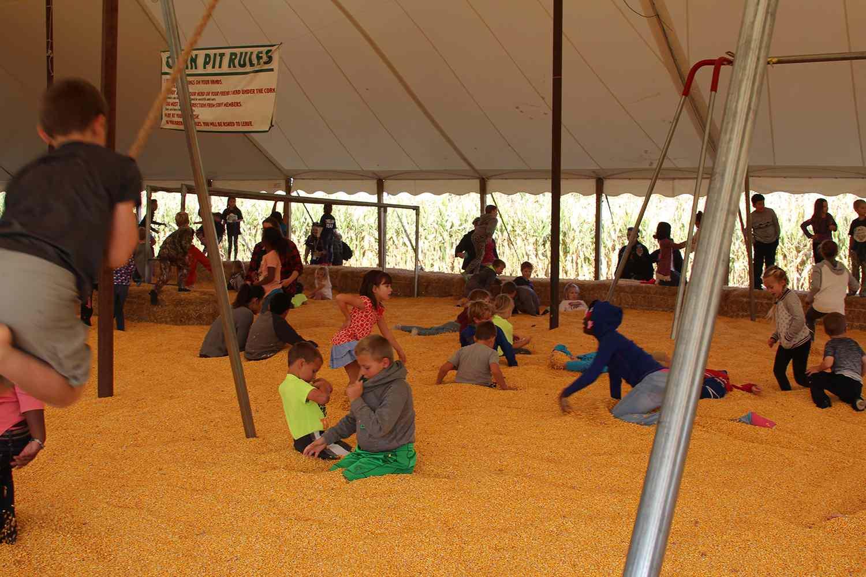 Sever's Corn Maze and Fall Festival