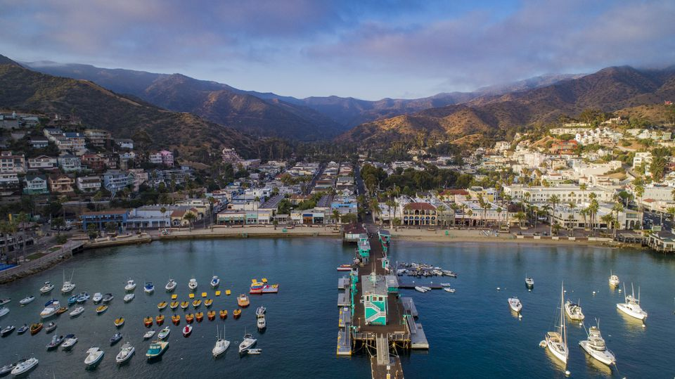 Aerial view of the harbor, Catalina Island
