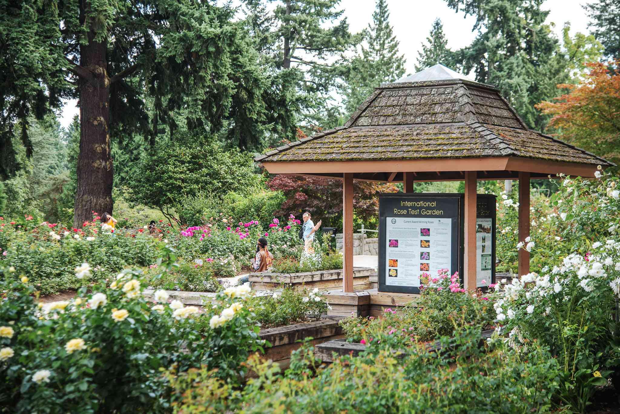 Un quiosco de información entre diferentes jardines de rosas