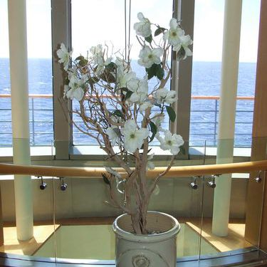 Celebrity Infinity - Views from Around the Ship