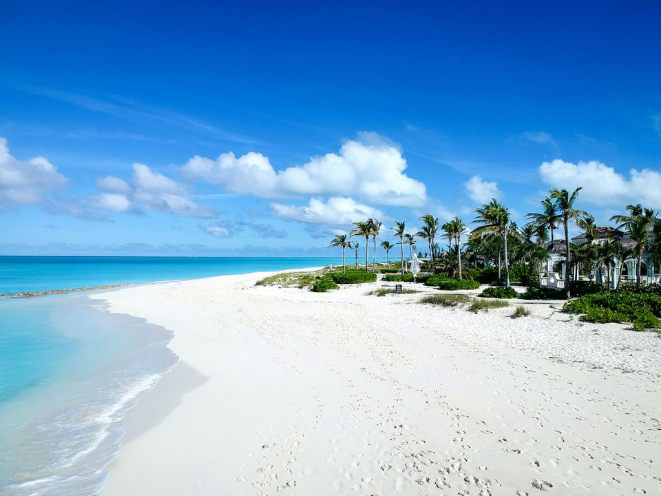 white sand beach in Turks and Caicos with dark green palm trees