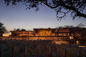 Montage Healdsburg vineyards