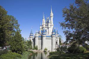 Castle at Disney World