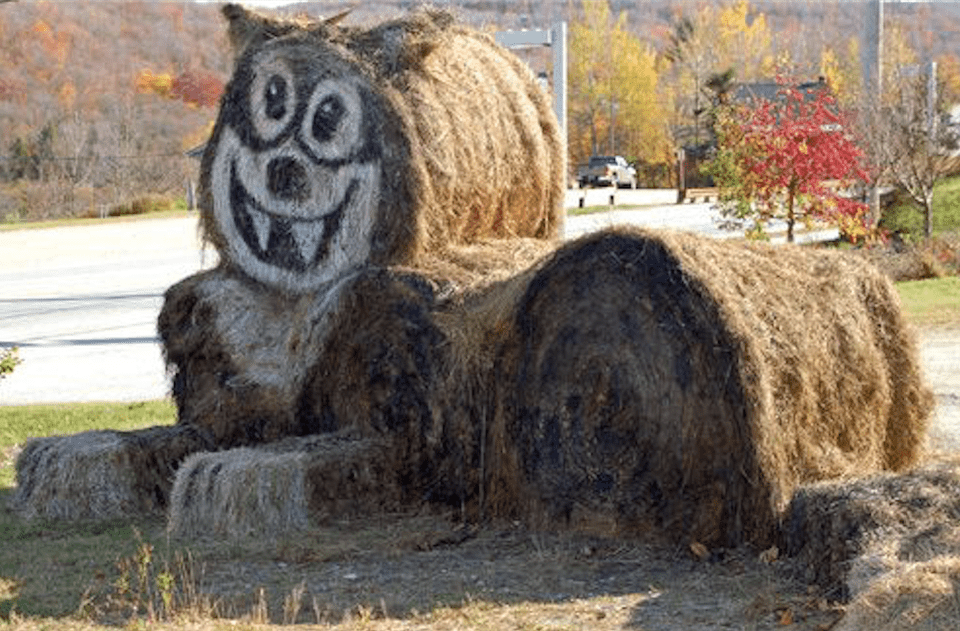 Killington Hay Bale Art - Cat