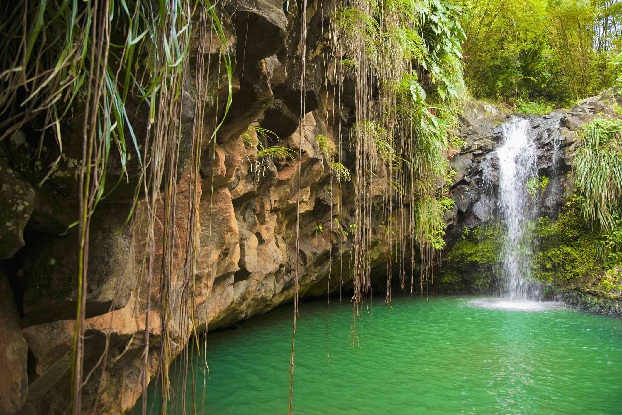 Small waterfall going into a pool with a rocky cliffside in Grenada
