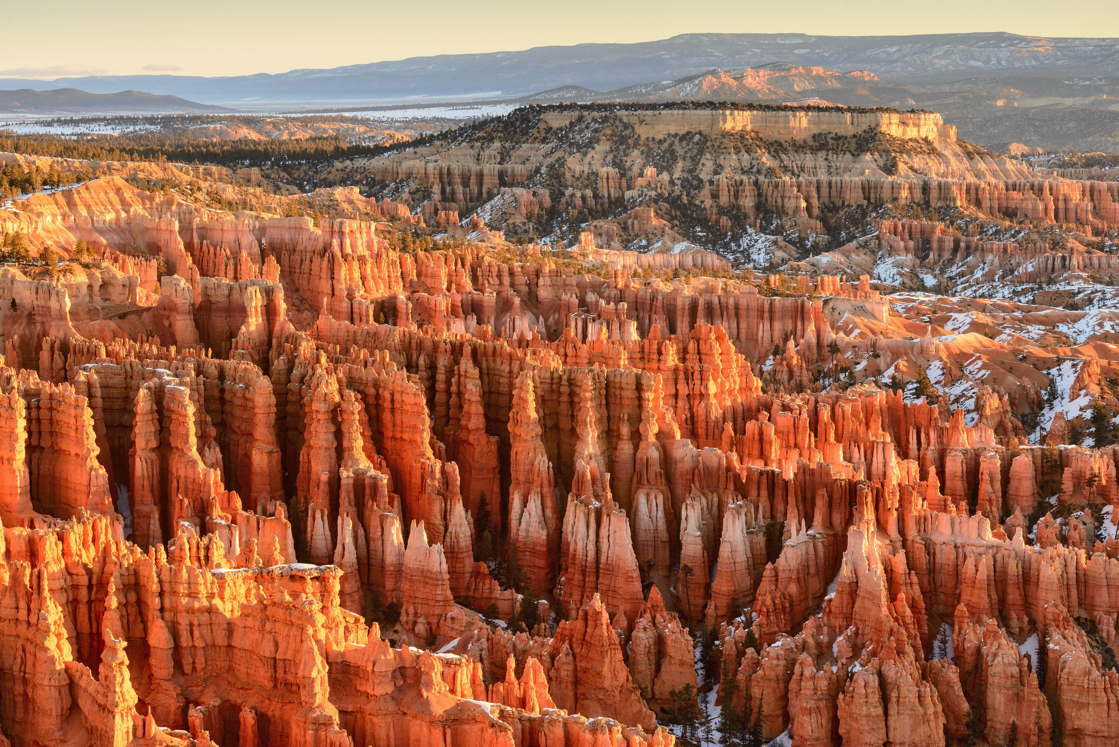 USA, Utah, Bryce Canyon National Park, Elevated view of canyon rock formations in morning light