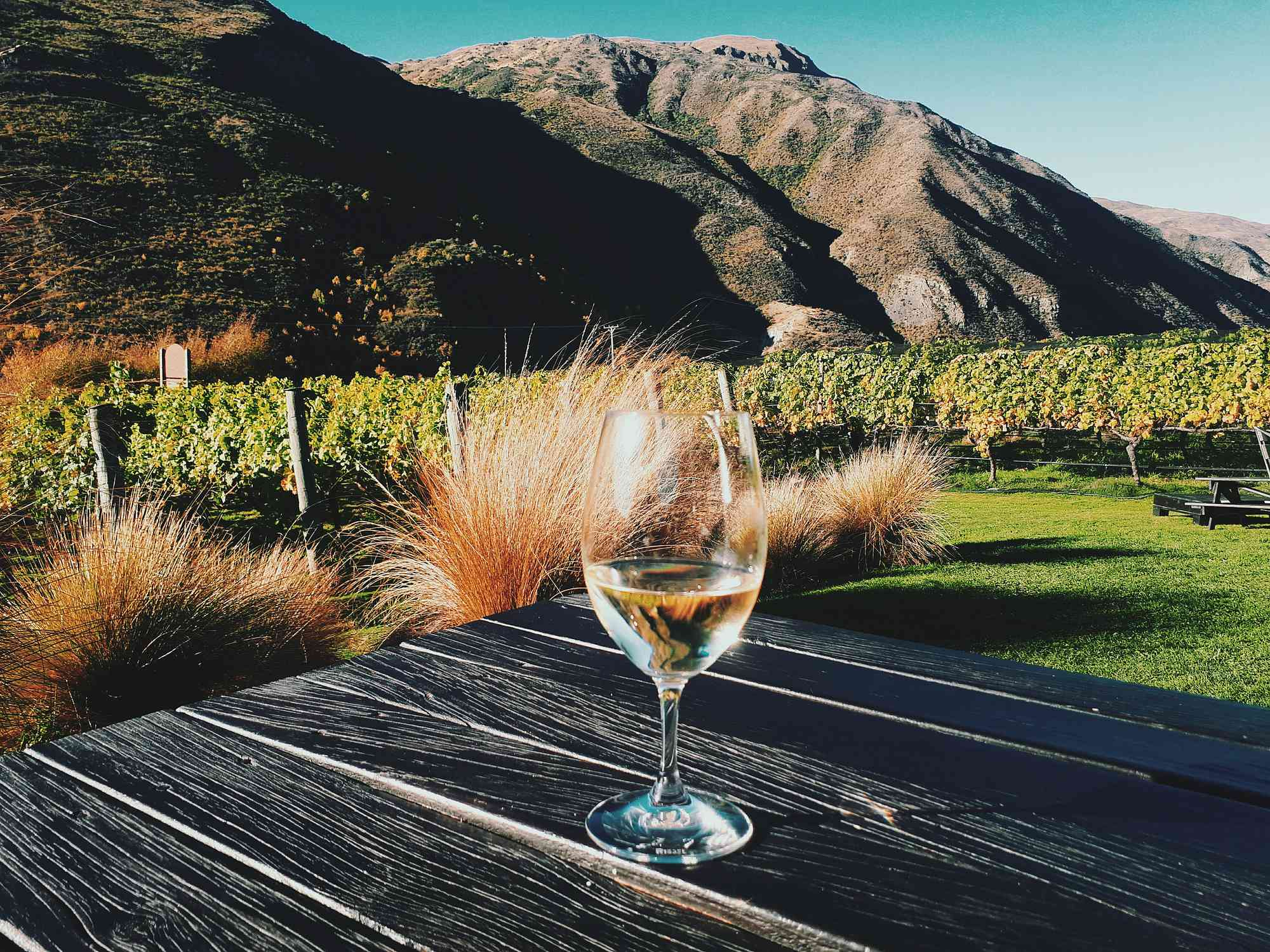 glass of white wine on a table outdoors with grass, vines and mountains behind