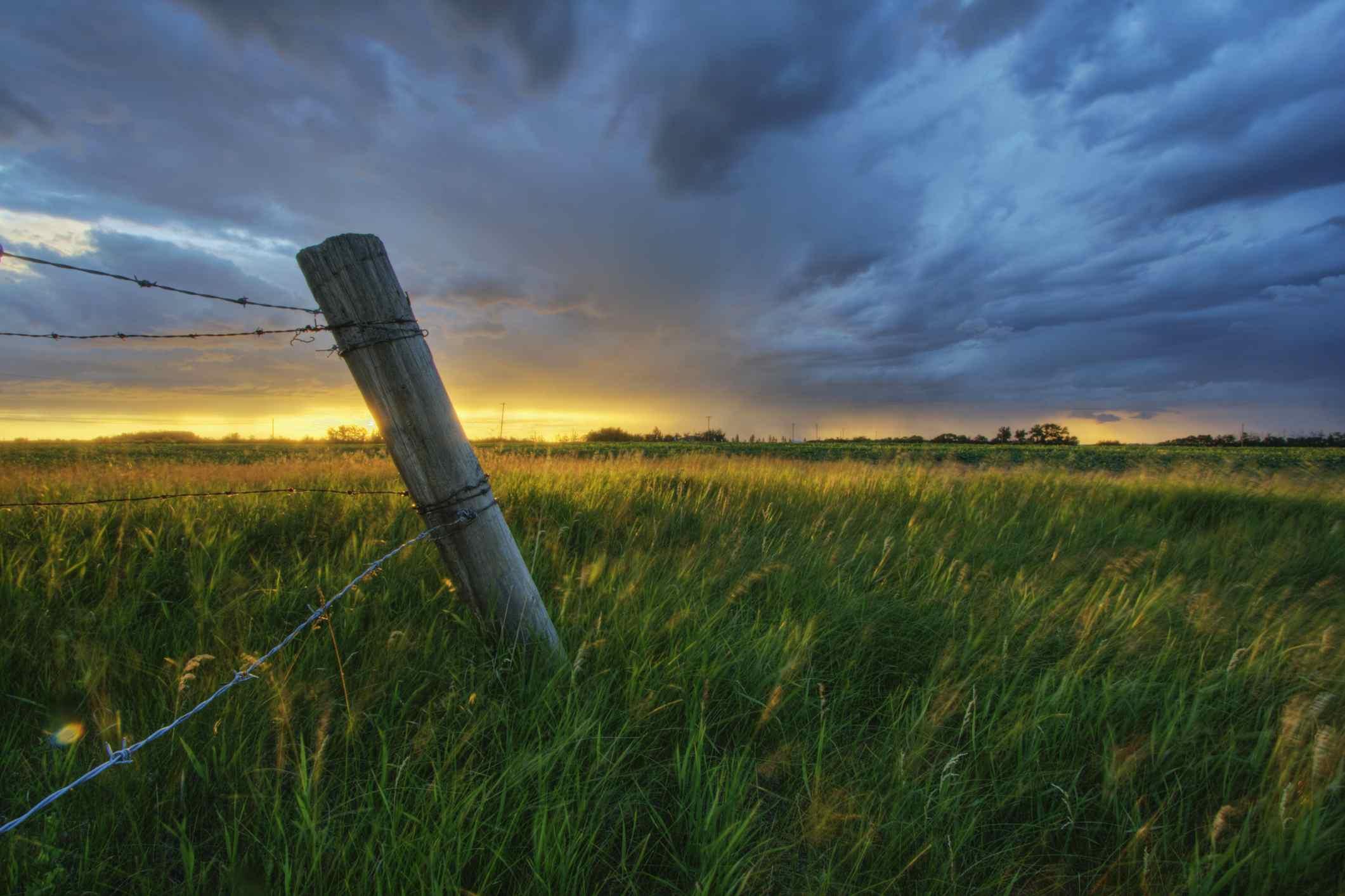 Summer thunderstorm and fencepost on a wheat farm north of Edmonton, Alberta
