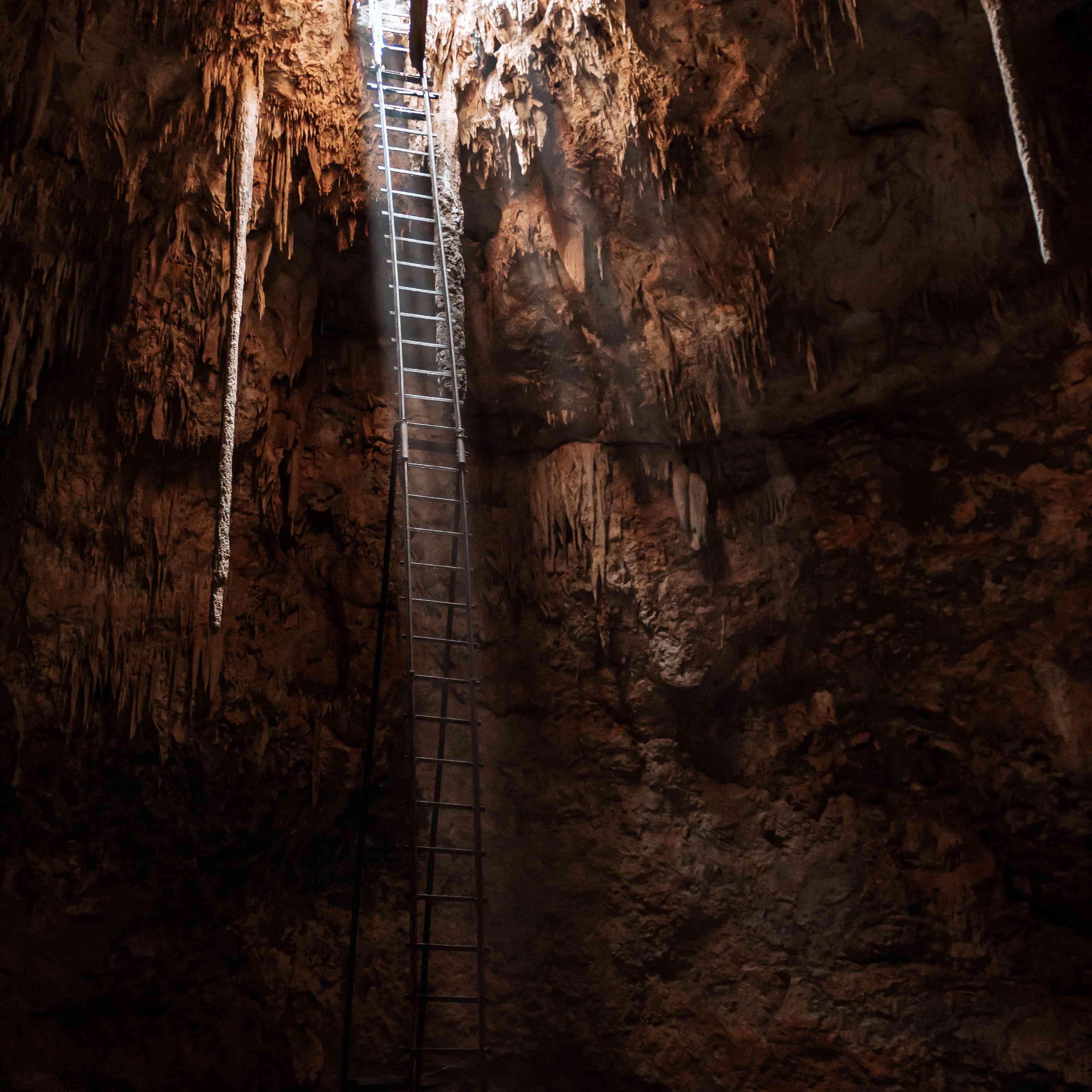 A ladder into an underground Cenote