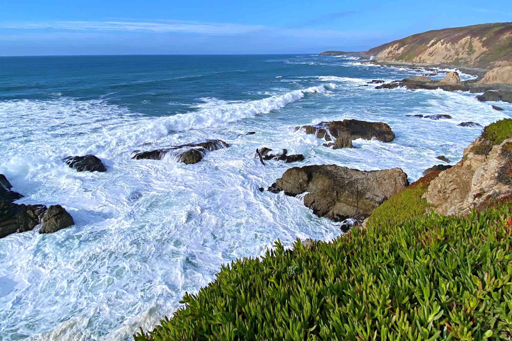 Bodega Bay Trailhead part of Sonoma Coast State Park in California