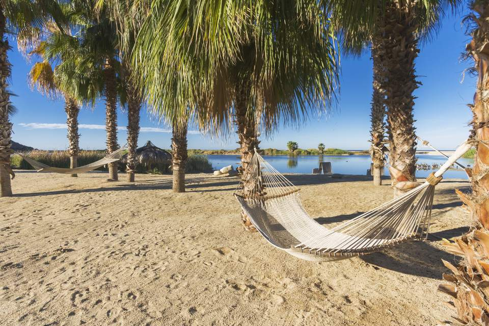 Hammocks on the beach on the Baja Peninsula