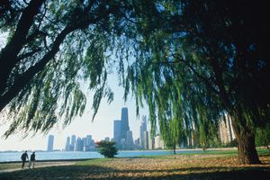 Illinois, Chicago, Lincoln Park, city skyline in distance