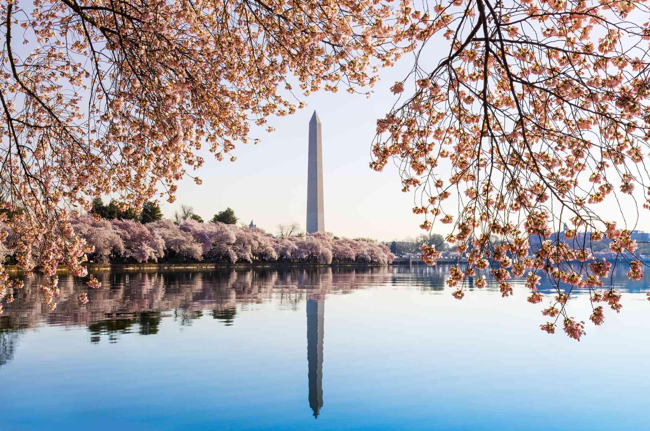Reflection Of Washington Dc In Lake
