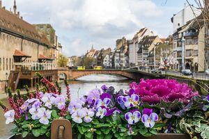 Strasbourg in the spring
