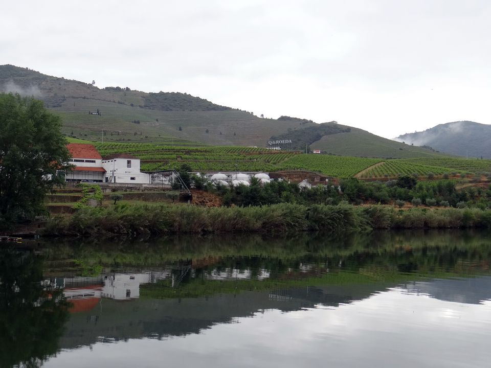 View of the Douro Valley from Viking Torgil river ship