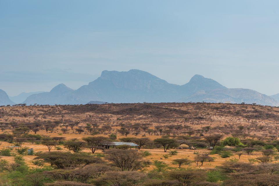 Arid desert landscape with shrubs against the backdrop of a distant blue mountain near Marsabit, in the Kaisut Desert, Northern Kenya