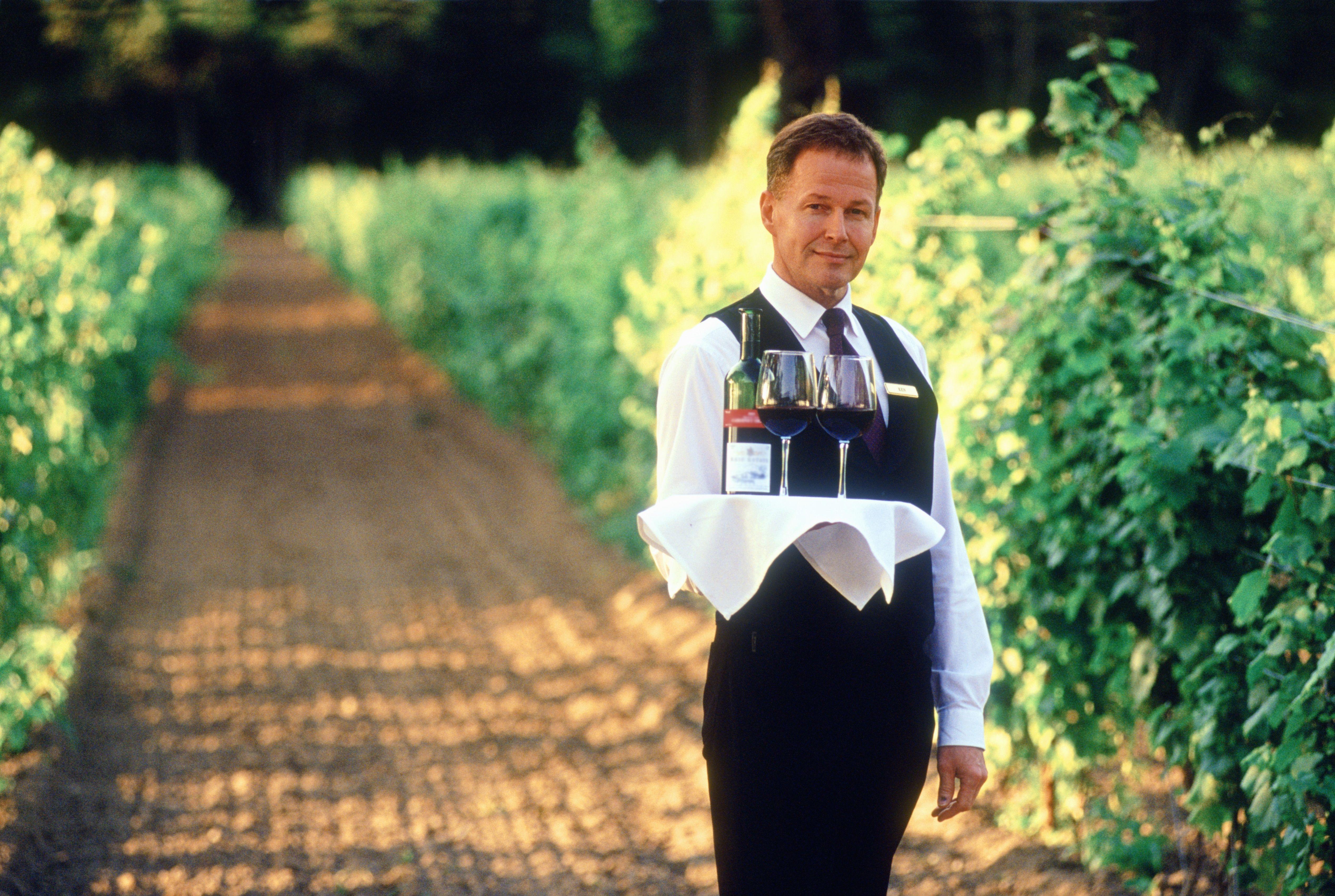 Waiter in Vineyard at Niagara-on-the-Lake, Ontario, Canada