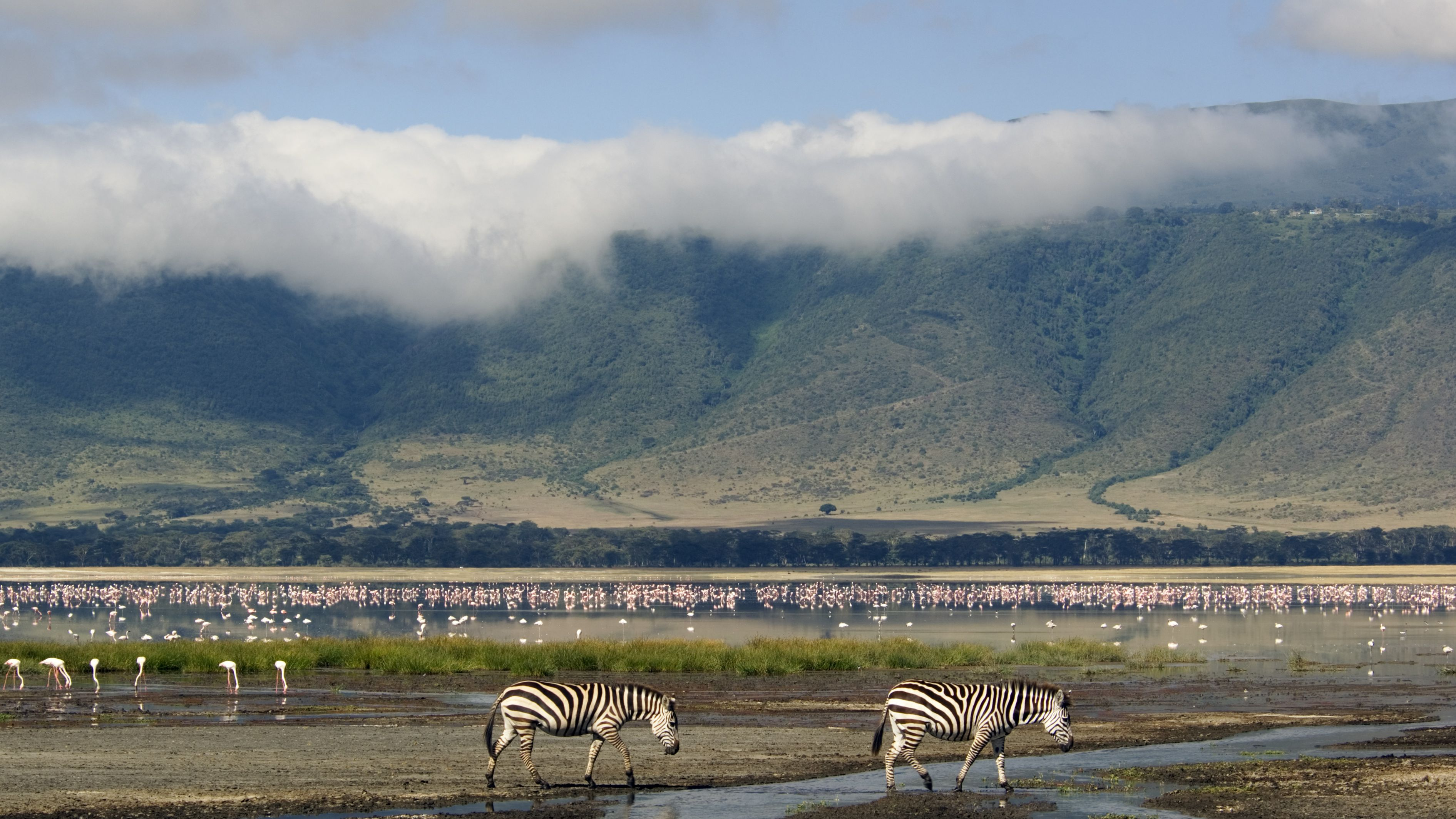 Ngorongoro Conservation Area: The Complete Guide