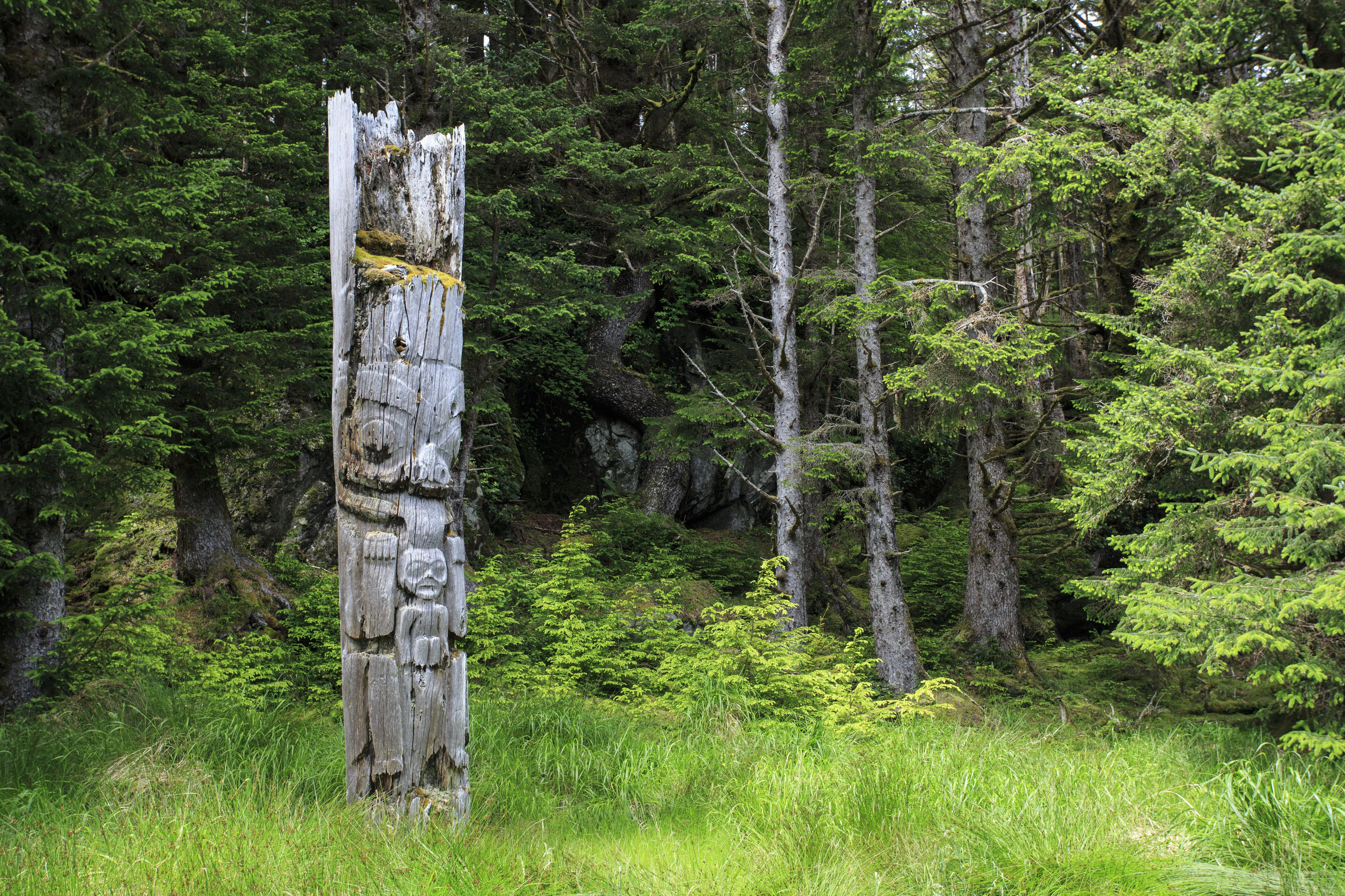 Standing mortuary pole at Ninstints on Sgang Gwaay, a UNESCO World Heritage Site celebrating the most preserved remaining display of ancient Haida culture, Gwaii Haanas National Park, Queen Charlotte Islands, BC, Canada