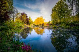 Japanese footbridge, Claude Monet's garden, Giverny, France