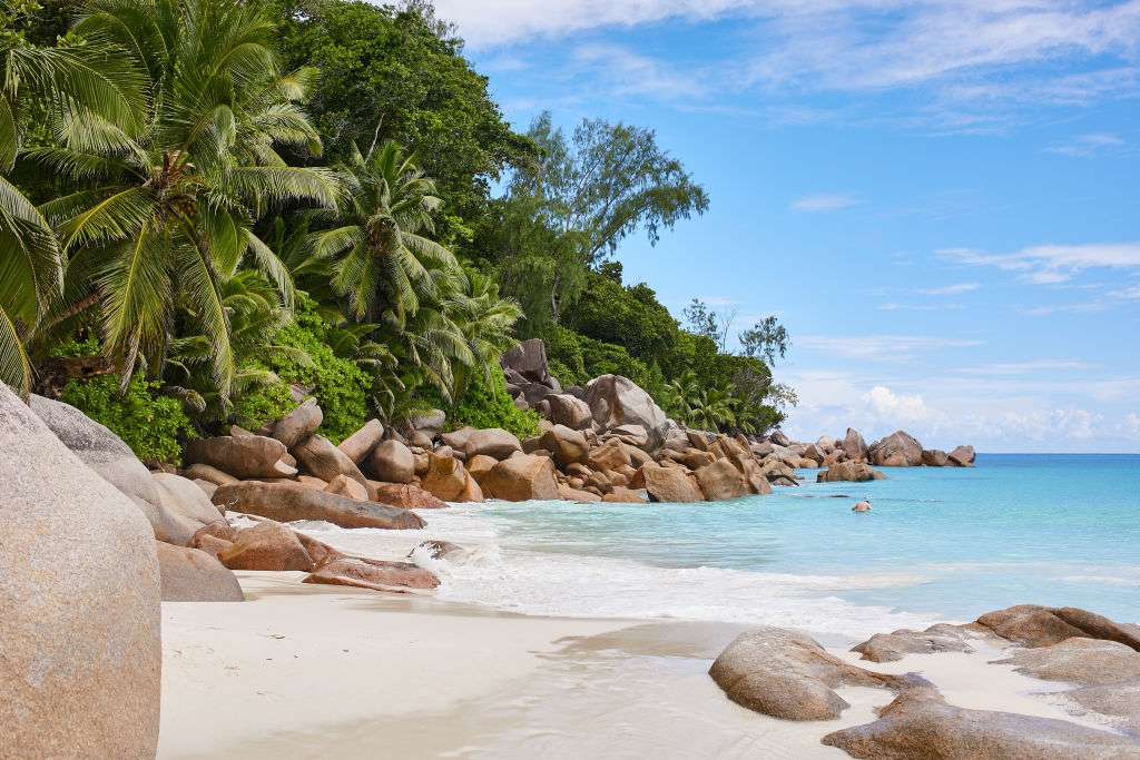 white sand and palm trees at the famous beach Anse Georgette on May 4, 2017 in Praslin, Seychelles
