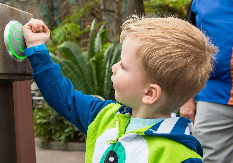 Kid using MyDisneyExperience and Magic Bands at Disney World