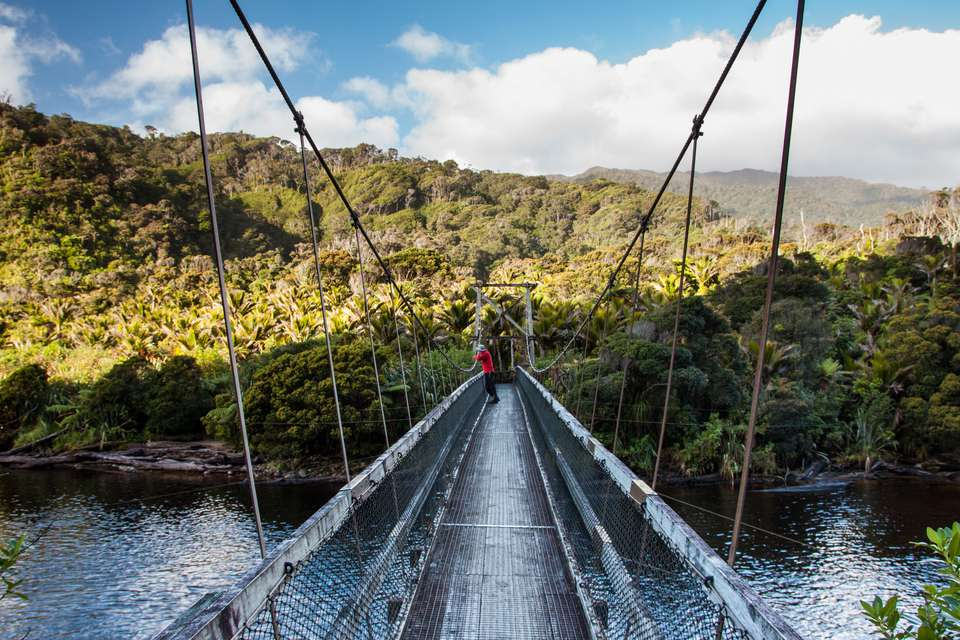 person in red on the bridge over Kohaihai River, Kahurangi National Park, New Zealand