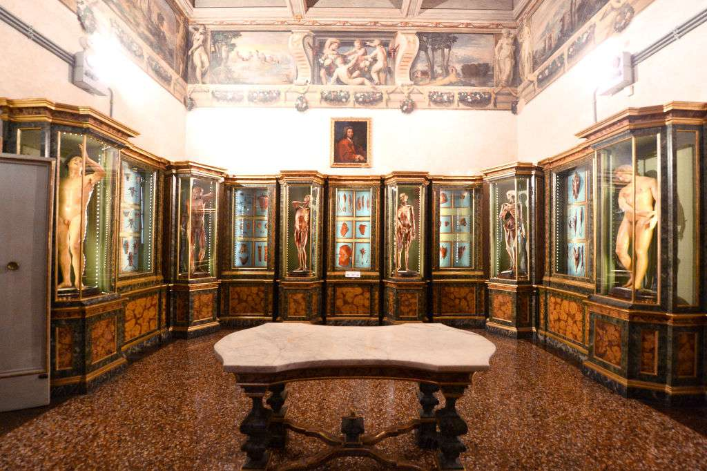General view of the Universitary Museum and the Anatomic Waxworks Collection at Palazzo Poggi