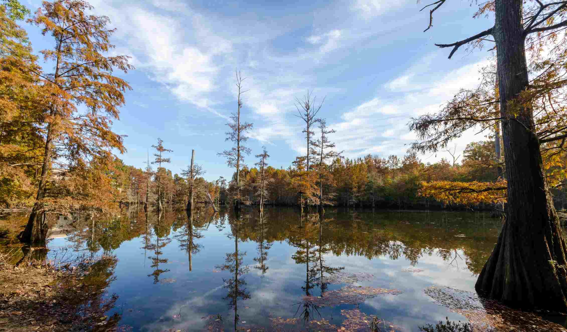 LeFleur's Bluff State Park, Jackson, Mississippi
