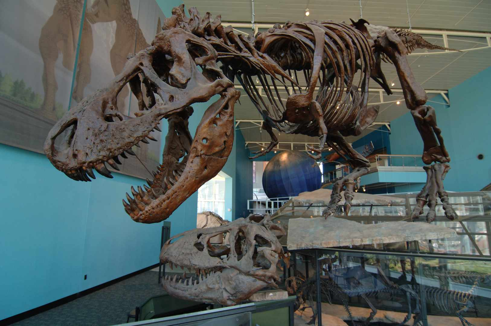 Maryland Science Center dinosaurs
