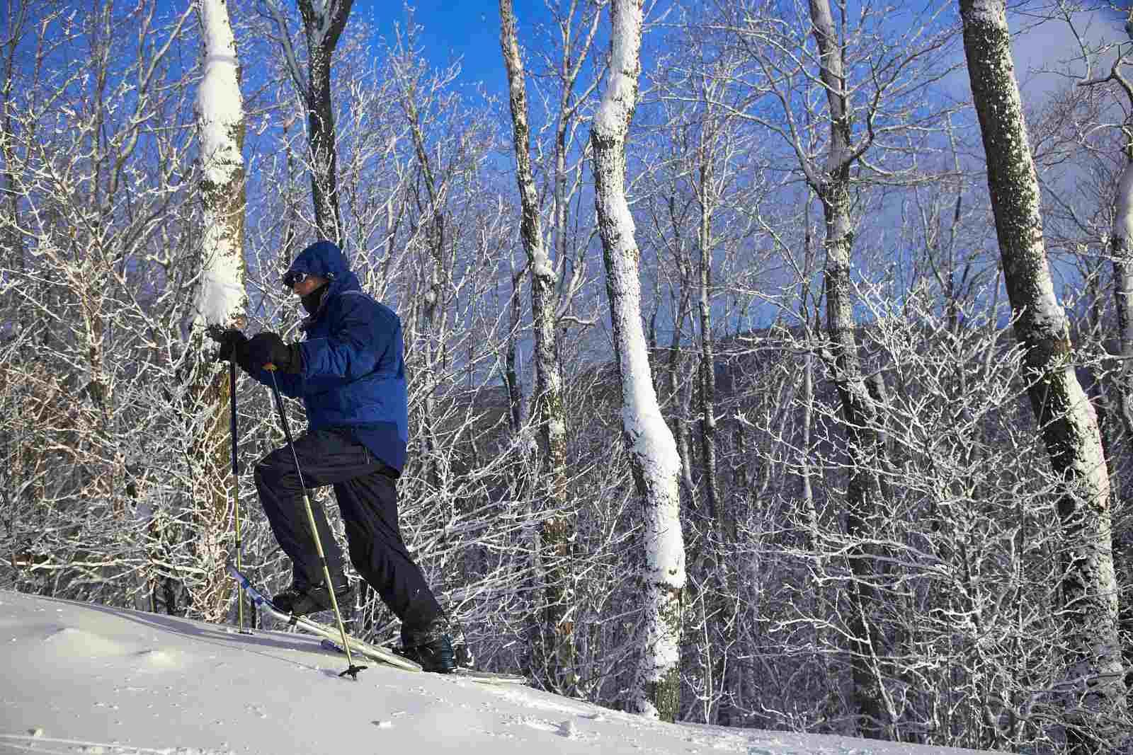 Snowshoeing Montreal 2017 season details for Parc-nature Pointe-aux-Prairies.