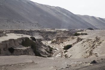 The History and Management of Earthquakes in Peru
