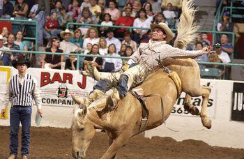 New Mexico State Fair In Albuquerque