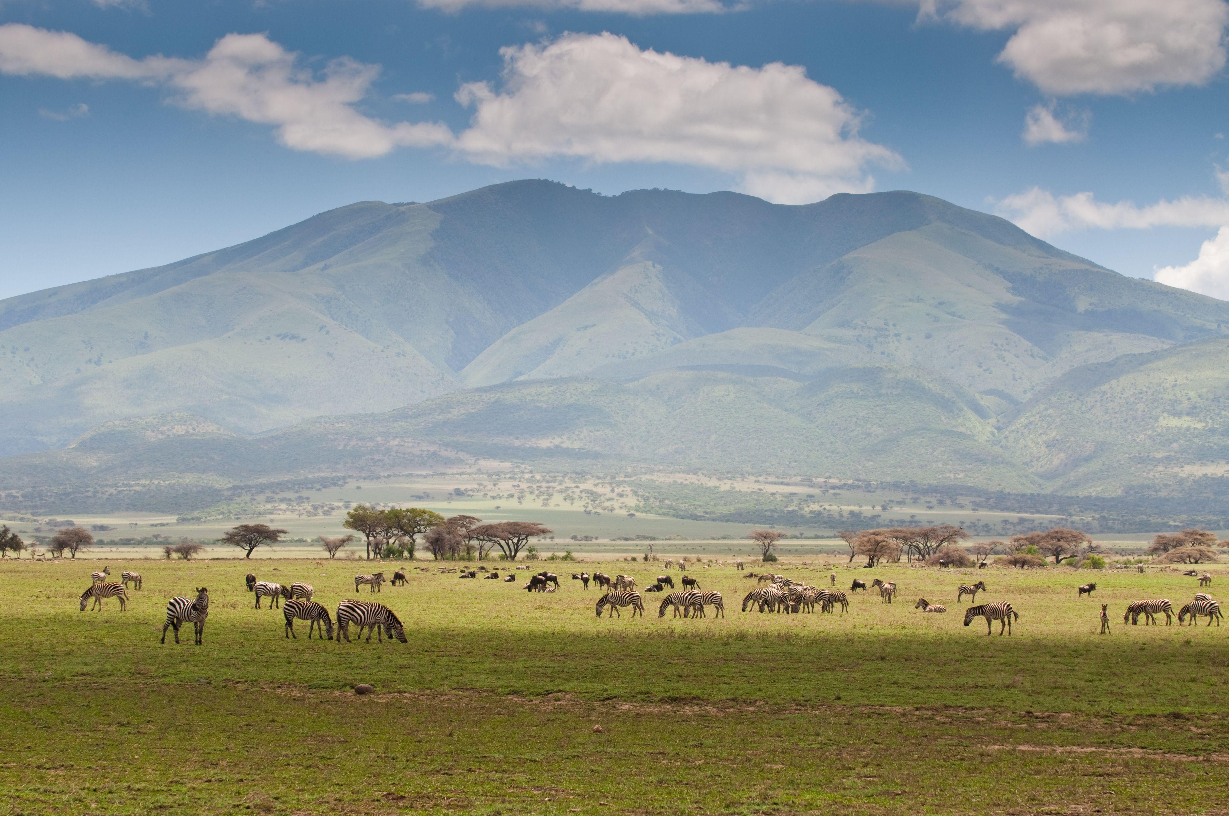 Top 10 Safari Destinations in Africa